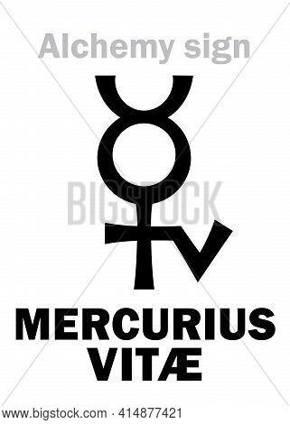 Alchemy Alphabet: Mercurius Vitae (