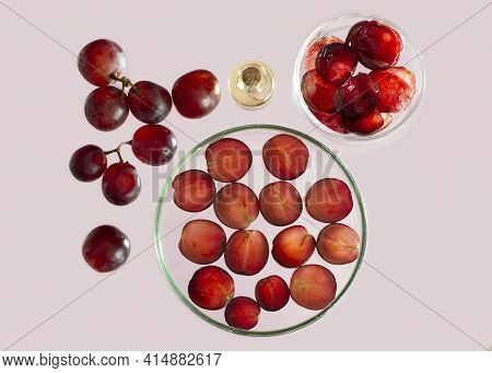 Red Grapes, Petri Dishes With Slice Of Red Grape And Grape Skin And Grape Seeds Oil. Ingredients For