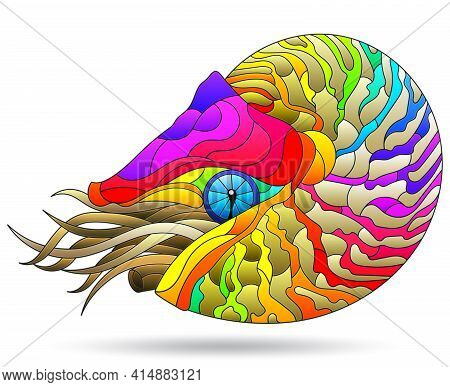 A Stained Glass-style Illustration With A Bright Rainbow Nautilus Clam, An Animal, Isolated On A Whi