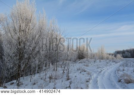 The Path By The Snow To The Snowcovered Winter Forest