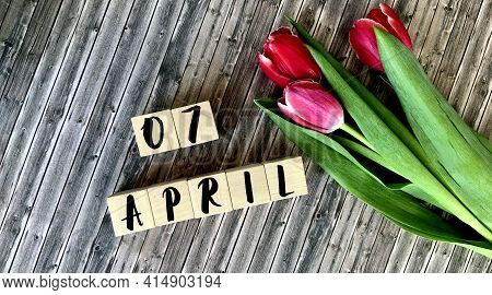 April 7 On Wooden Cubes.next To The Tulips On A Wooden Background.calendar For April.