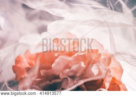Lovely peony flower under soft tulle fabric on white wooden background.