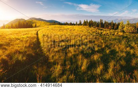 Morning sunlight illuminates the mountain ranges. Location place Carpathian mountains, Ukraine, Europe. Vibrant photo wallpaper. Summer trip concept. Explore the beauty of earth.