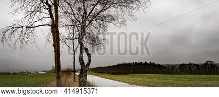 Landscape with an dirty road between agricultural fields. Covered by first snow