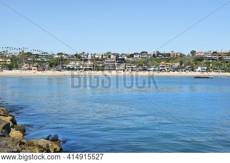 NEWPORT BEACH, CA - MARCH 28, 2017: Corona Del Mar State Beach seen from the jetty with a Harbor Seal and pup on the rocks..