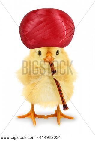 Cute cool chick with turban and playing flute funny Easter conceptual image
