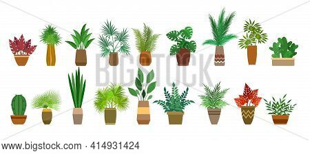 Pot Plants Interior Decorations. Home Gardening Plant Set On White Background, Indoor Potted Plantin