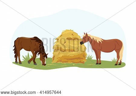 Two Horses Eat Hay From The Trough On The Farm. Country Pet. Isolated Character On A White Backgroun