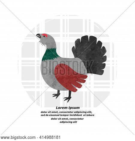 Capercaillie Bird Vector Illustration. Cartoon Cute Grouse