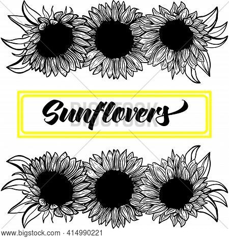 Banner, Border, Ink Sunflowers On White Background For Greeting Card, Line Art. Hand-drawn Decorativ