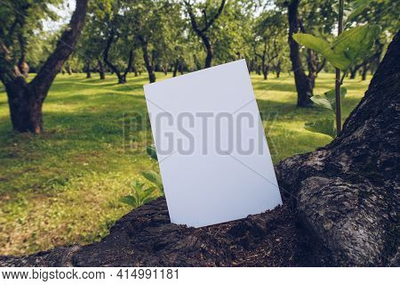 Mock Up Of Vertical Postcard On A Wood Branch. Boho Design Of Postcard Among Curvy Fruit Trees Orcha