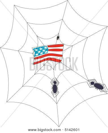 Amerika In Web