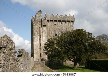 Power Of The Blarney Castle