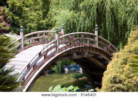 Arc Bridge In The Japanese Garden