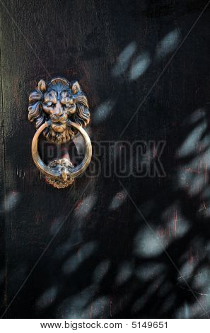 Bronze Lion Door Button