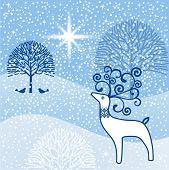 Winter wonderland north star reindeer  poster