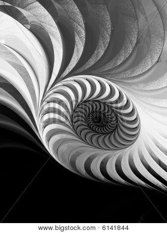 B&W Geometric Spiral