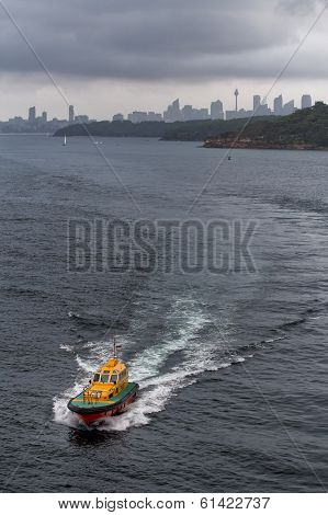 Harbour Pilot guides a ship out of Sydney Harbour