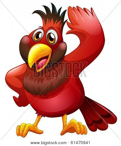 Illustration of a red bird on a white background