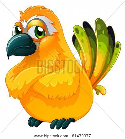 Illustration of an angry bird on a white background