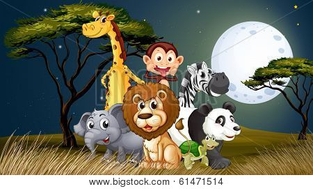 Illustration of a group of playful animals under the bright fullmoon