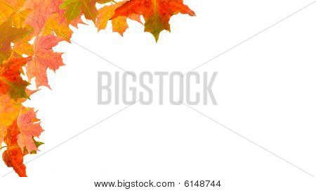 autumn leaves in a corner frame background image poster