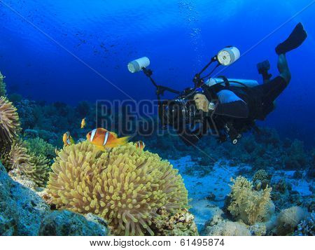 Underwater Photographer scuba diving on reef with clownfish