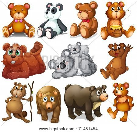 Illustration of the huggable teddy bears on a white background