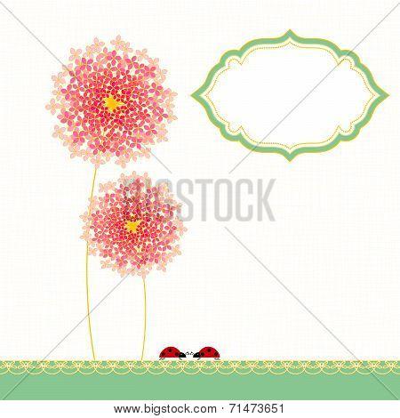Colorful Hydrangea Flower Garden Party