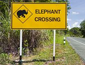 Caution: Elephants crossing the road sign Thailand poster