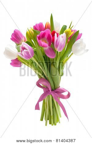 Bouquet of spring tulips flowers isolated on white background