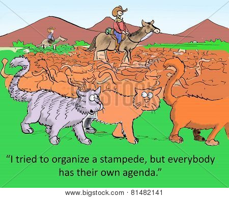 Independent Minds Means No Teamwork