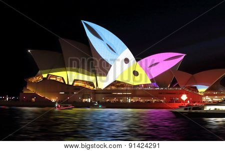 Sydney Opera House During Vivid Sydney With Toucans