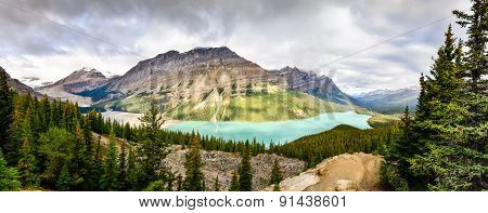 Panoramic View Of Peyto Lake And Rocky Mountains, Alberta