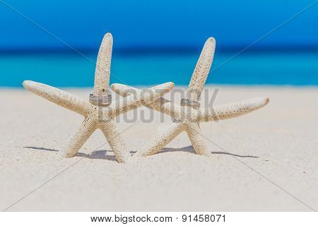 wedding rings on star fish, beach wedding concept, outdoor wedding in tropics