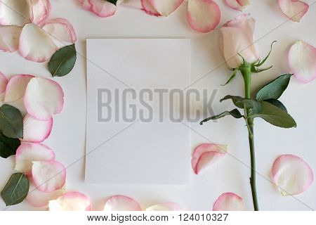 Pink Rose and Blank paper Mockup.Wedding romantic template. Mockup layout template for brochure banner space for text.