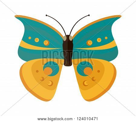 Cabbage butterfly vector. Cabbage butterfly isolated on white background. Cabbage butterfly vector illustration. Colored Cabbage butterfly isolated on white background.