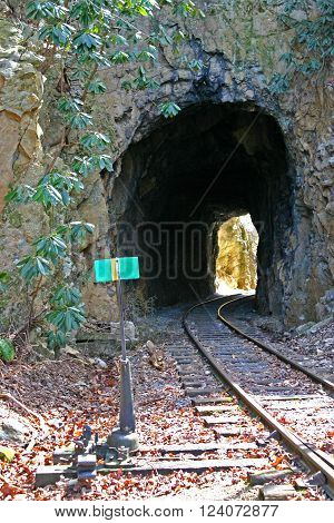 railroad tracks go through a small tunnel