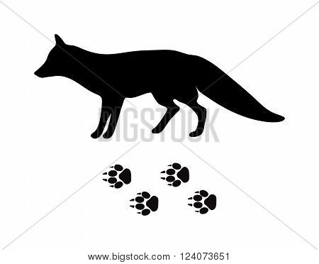 Wild fox animal black silhouette and wild animal predator symbol. Predator silhouette. Wild life black animal silhouette. Black silhouette wild animal zoo vector.
