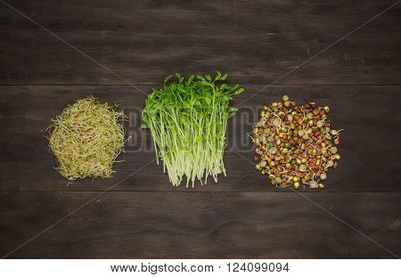 alfalfa,snow peas and lentils sprouts on vintage wooden background
