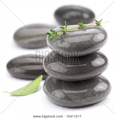 Spa stones with green leaves on a white background.