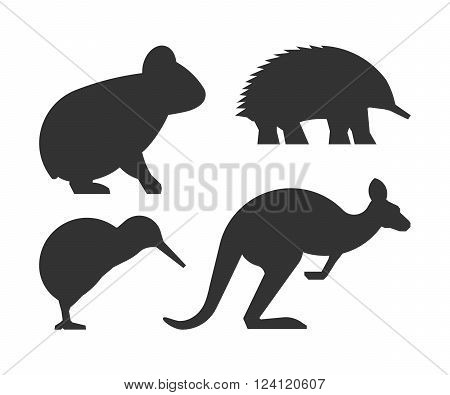 Vector set of silhouettes australian animals. Black icon koalas kangaroos echidnas and kiwi.
