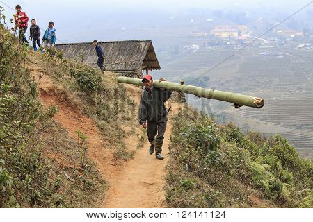 Sapa Vietnam - February 17 2016: Man living in Sapa in north Vietnam carrying a bamboo stake walking in a narrow path in the mountains of Sapa