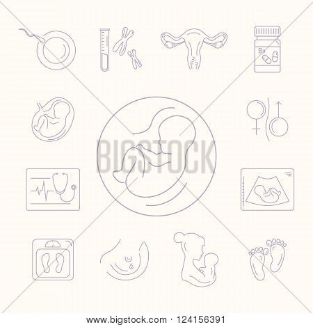 Pregnancy and childbirth obstetrics gynecology line icons. Human embryo. Abstract fetus symbol. Breastfeeding. Health medical and care child. Diagnostic equipment medical tools. Motherhood.