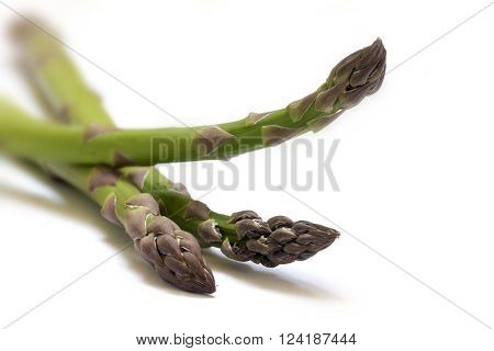green asparagus, three spears in a closeup shot, isolated with shadows on a white background, selected focus and very narrow depth of field