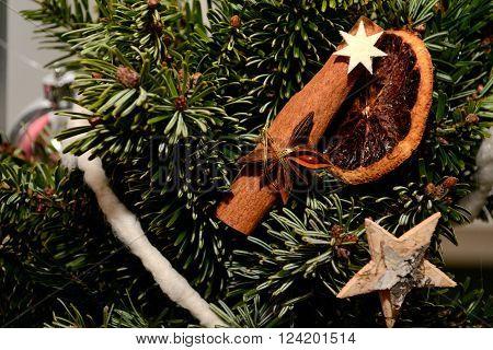 Cinnamon stick on fir branch - Christmas Decoration
