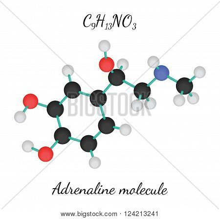 C9H13NO3 adrenaline 3d molecule isolated on white