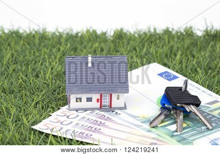 Little house with money and bunch of keys on grass ** Note: Shallow depth of field