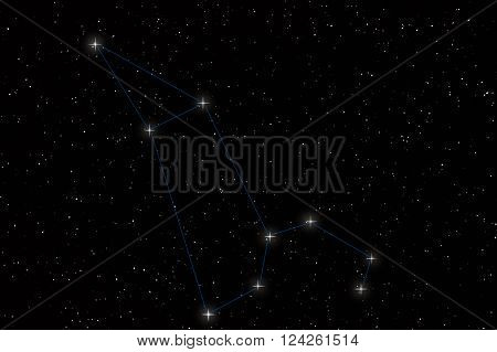 Leo Constellation, Lion Constellation with constellation lines