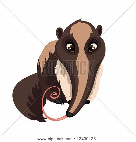 Anteater isolated on white background. Giant anteater in a cartoon style. Vector illustration.
